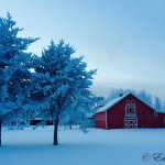 Winter at the Heritage Village - Ed Froese
